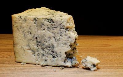 Tranche de fromage de roquefort avec sa fine croûte